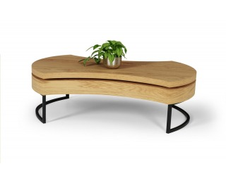 Konferenčný stolík Aurea 3 - dub zlatý / čierna